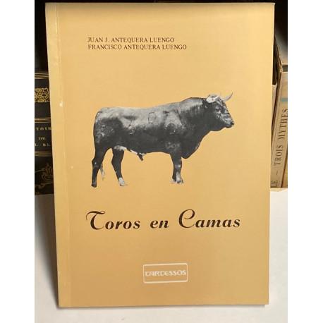 Toros en Camas.