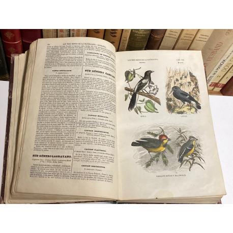 Los Tres Reinos de la Naturaleza. Tomo III: ZOOLOGÍA. [AVES Y PÁJAROS].