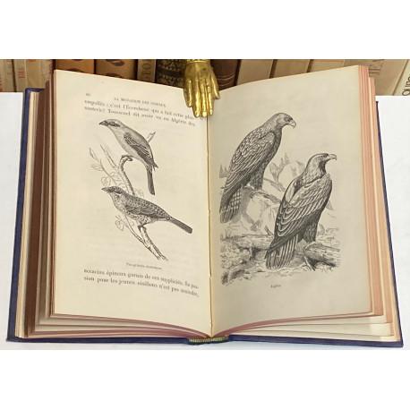 La Migration des Oiseaux. [PÁJAROS].